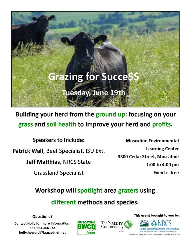 Grazing for Success